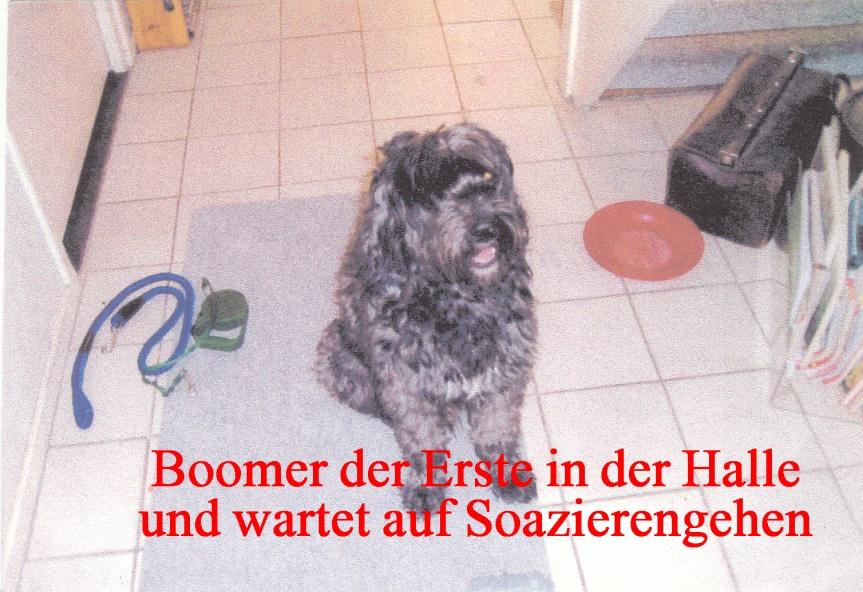 Boomer II